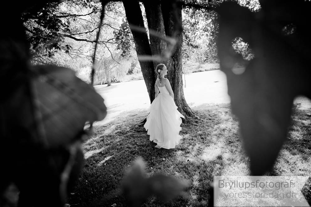 bryllupsvbilleder_vejle25