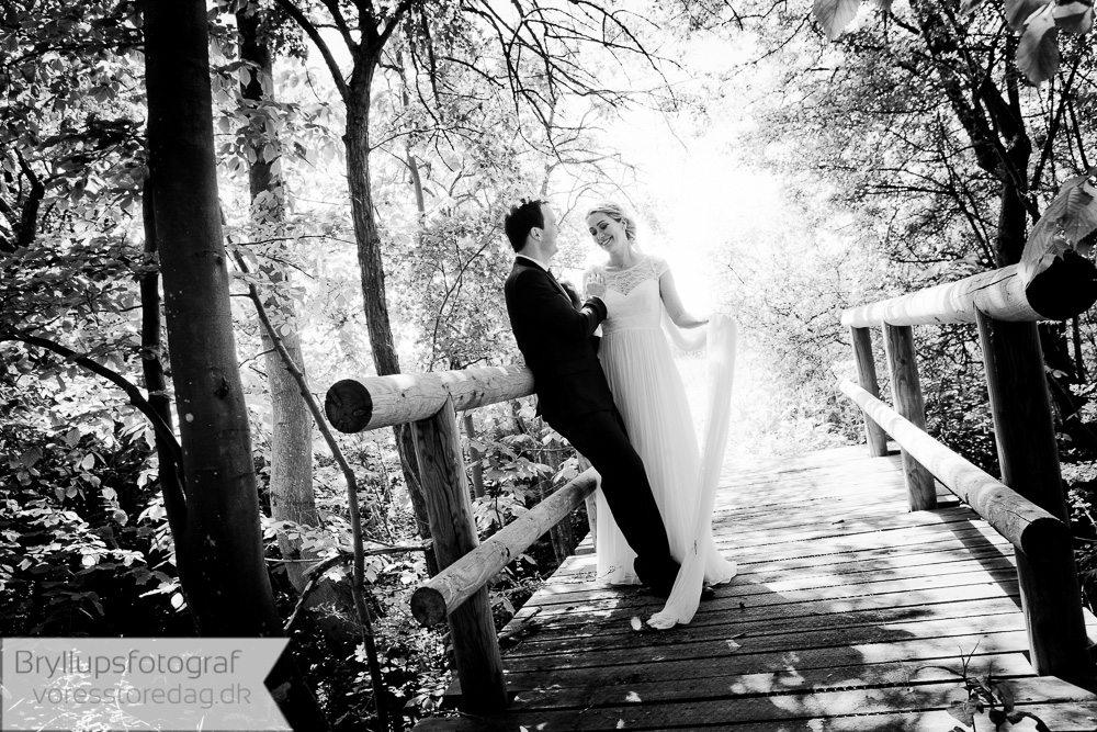 bryllupsfotograf Sonnerupgaard Gods2