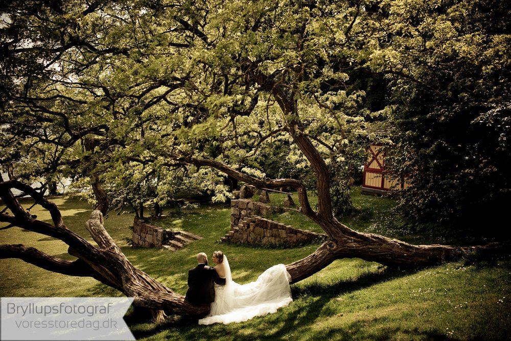 bryllupsting
