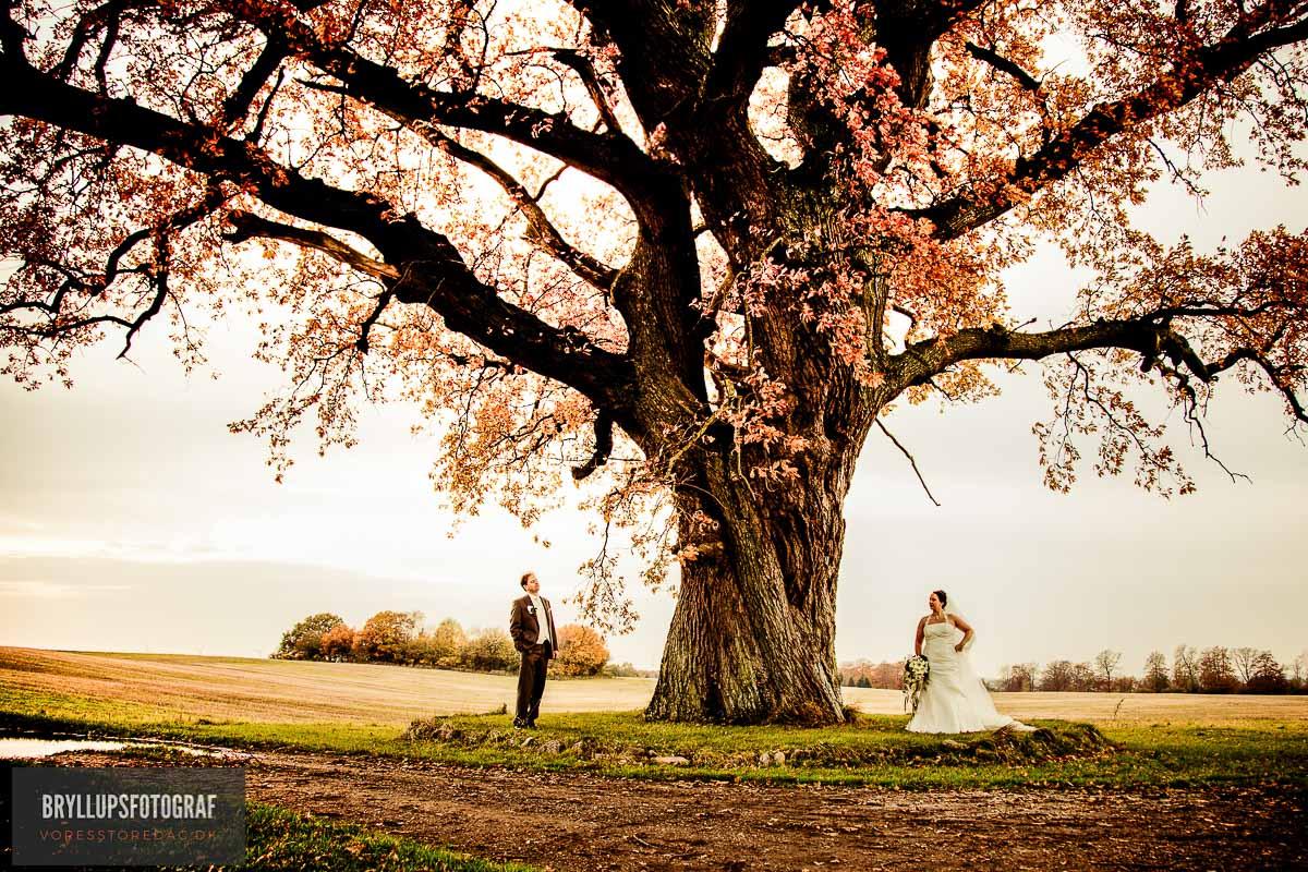 efterårs bryllup