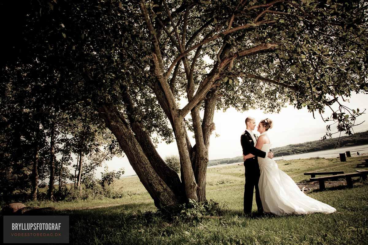 flot bryllupsbillede af brudepar under træ